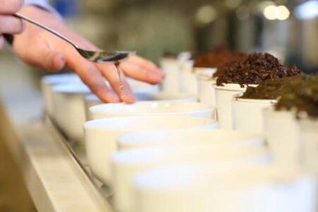 Un negocio apasionante alrededor de la inmensidad del té